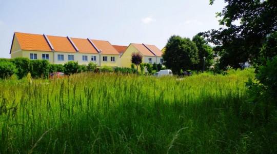 Grundstück Beelitz-Spreeinsel Immobilien