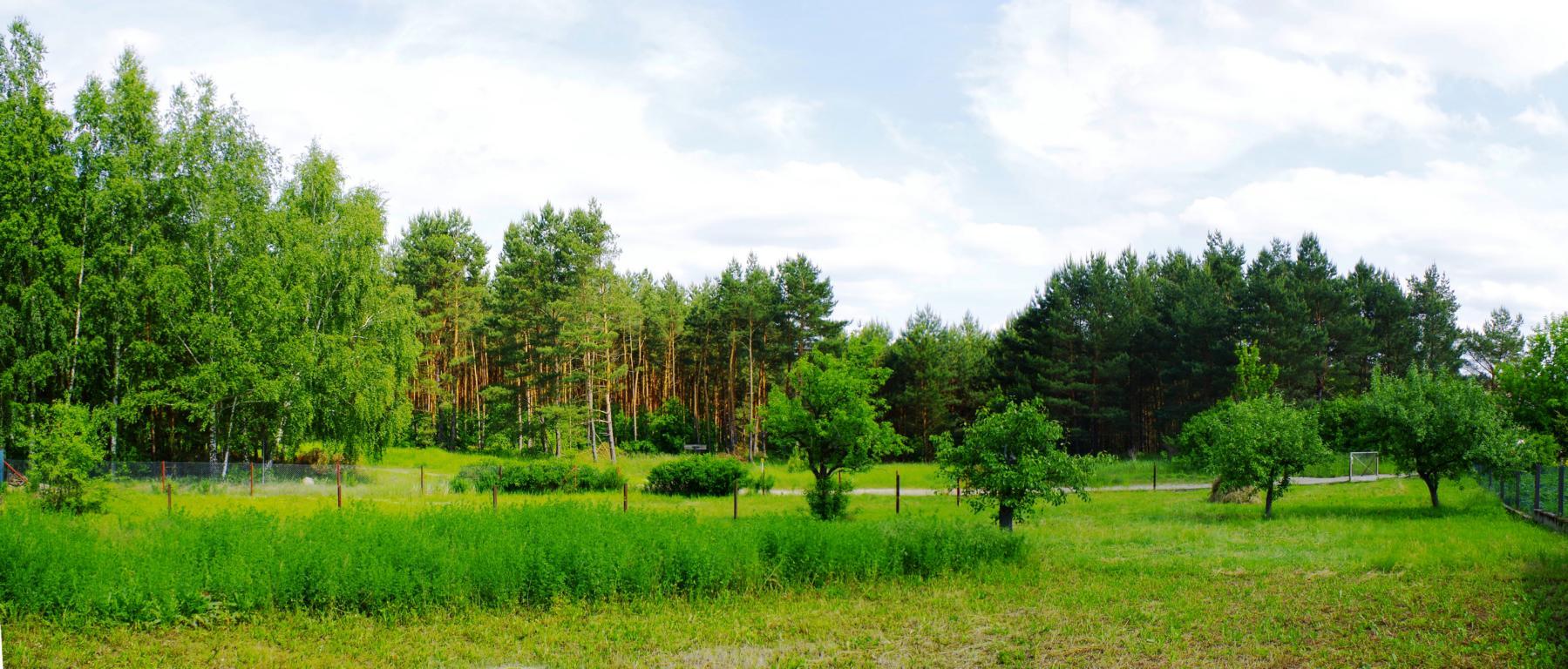 Spreeinsel Grundstück in Bad Freienwalde