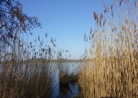 Natur und Wasser in Bestensee