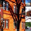 rathaus-neu